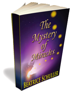 3D Paperback The Mystery of Miracles